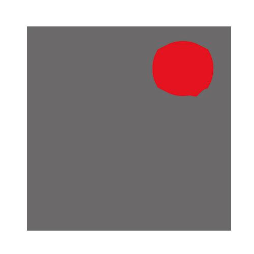 Koll - Projektrealisierung